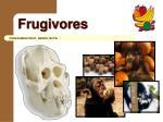 frugivores2