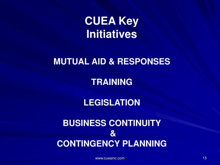 CUEA Key Initiatives