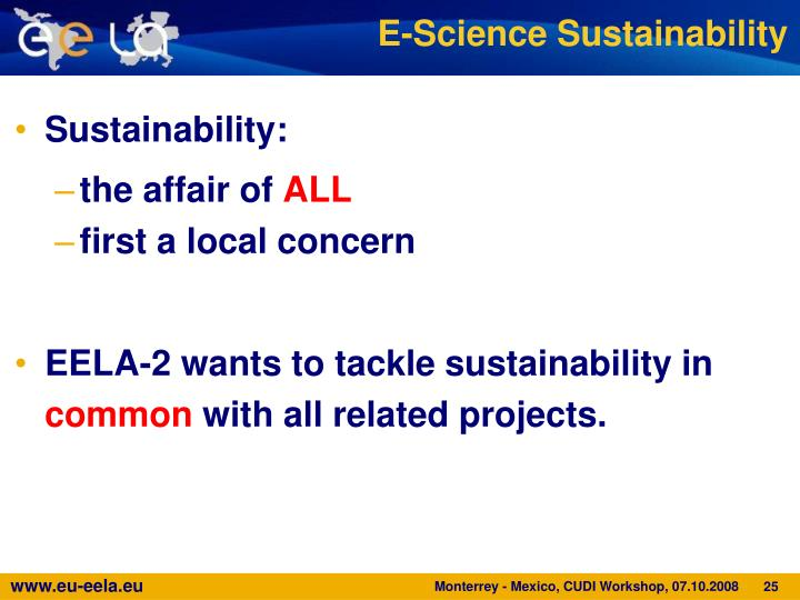 E-Science Sustainability