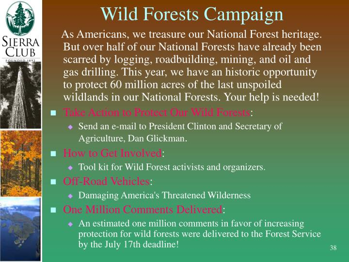 Wild Forests Campaign