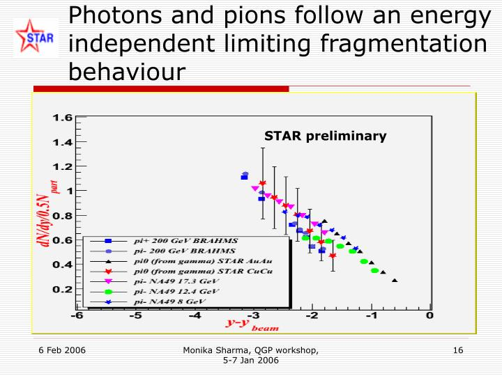 Photons and pions follow an energy independent limiting fragmentation behaviour
