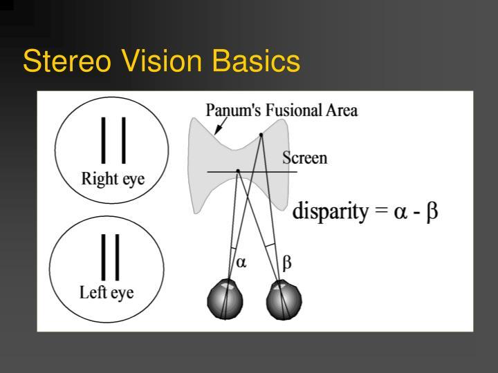 Stereo Vision Basics