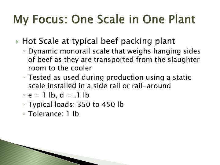 My Focus: One Scale in One Plant