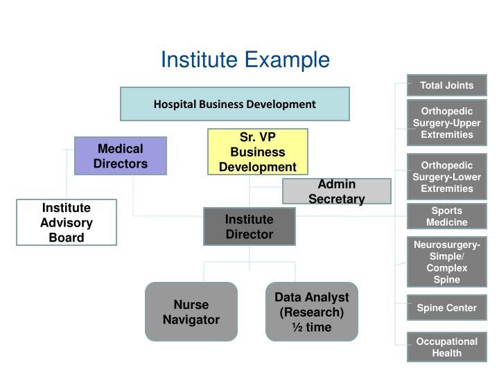 Institute Example