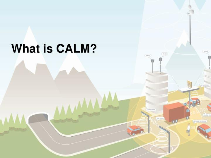 What is CALM?
