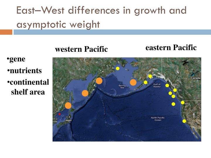 East–West differences in growth and asymptotic weight