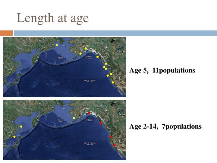 Length at age