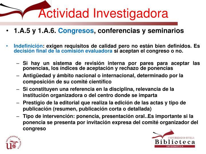 Actividad Investigadora