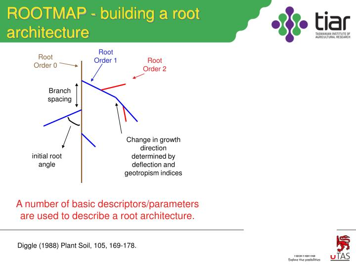 ROOTMAP - building a root architecture
