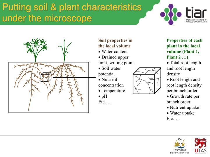 Putting soil & plant characteristics