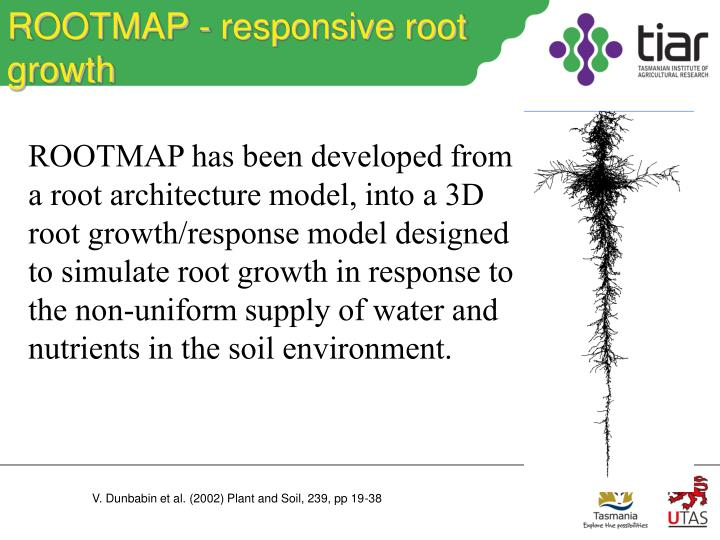 ROOTMAP - responsive root growth