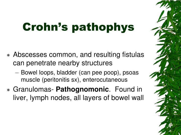 Crohn's pathophys