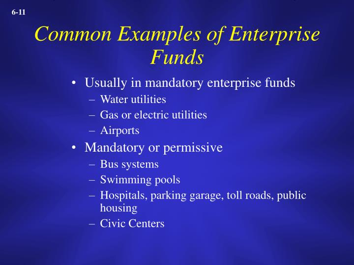 Common Examples of Enterprise Funds