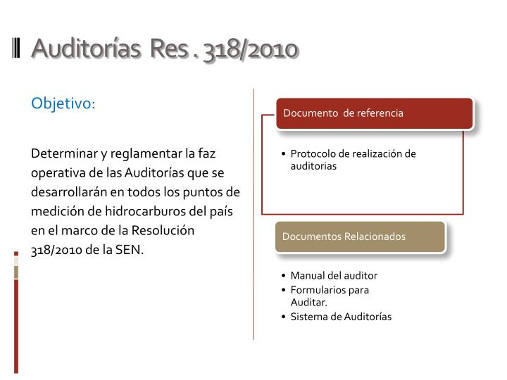 Auditor as res 318 2010