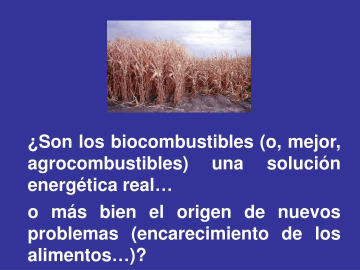 ¿Son los biocombustibles (o, mejor, agrocombustibles) una solución energética real…