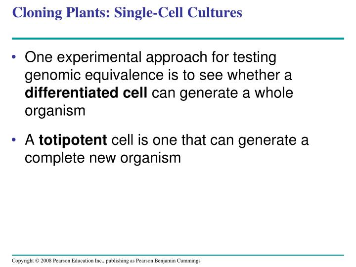 Cloning Plants: Single-Cell Cultures