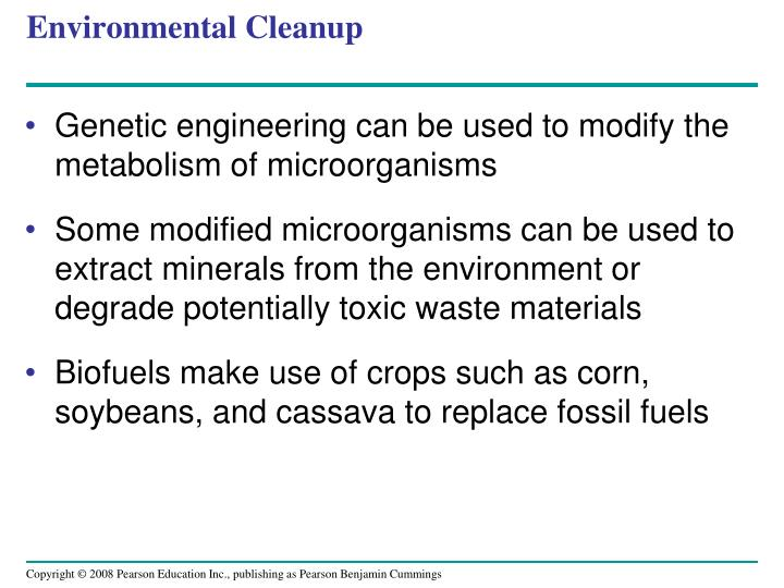 Environmental Cleanup