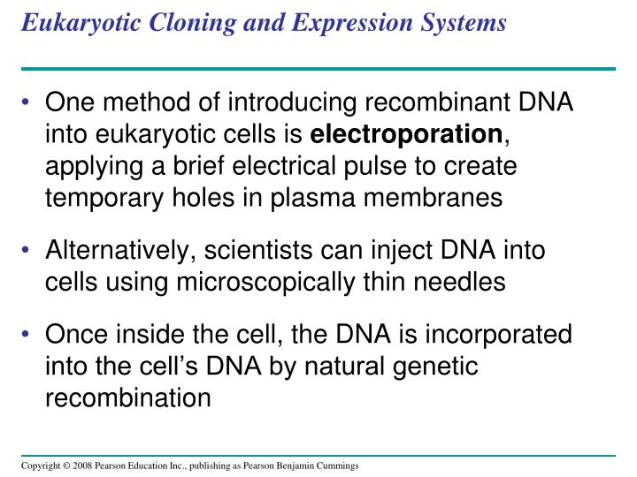 Eukaryotic Cloning and Expression Systems
