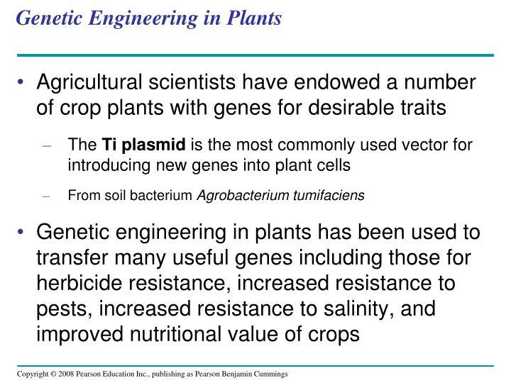 Genetic Engineering in Plants