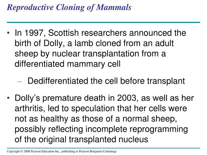 Reproductive Cloning of Mammals