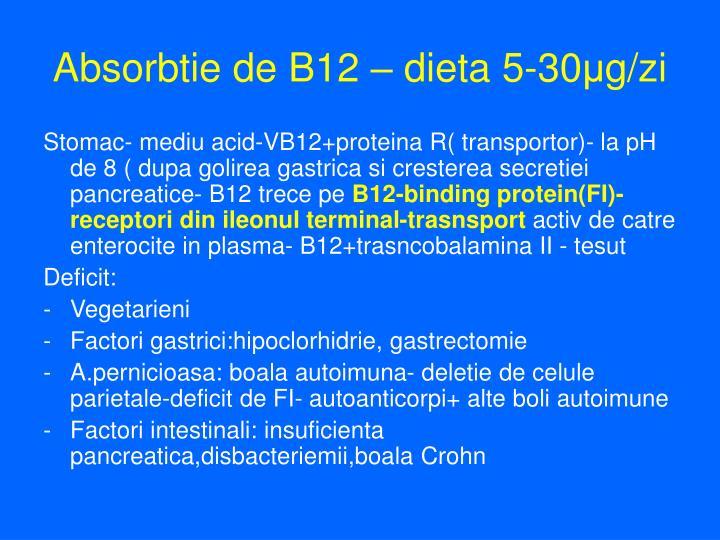 Absorbtie de B12 – dieta 5-30