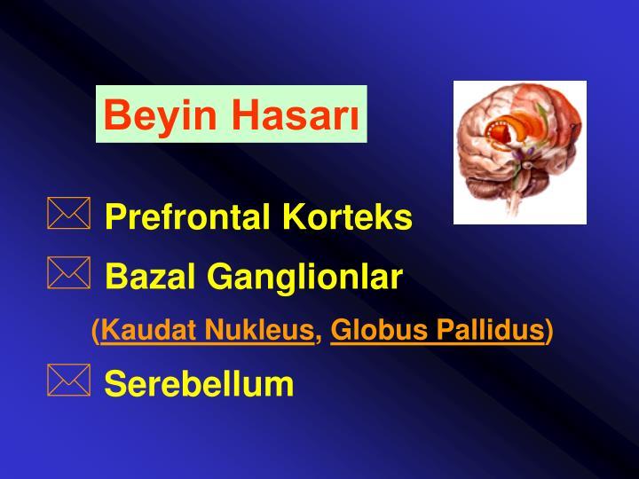 Beyin Hasarı