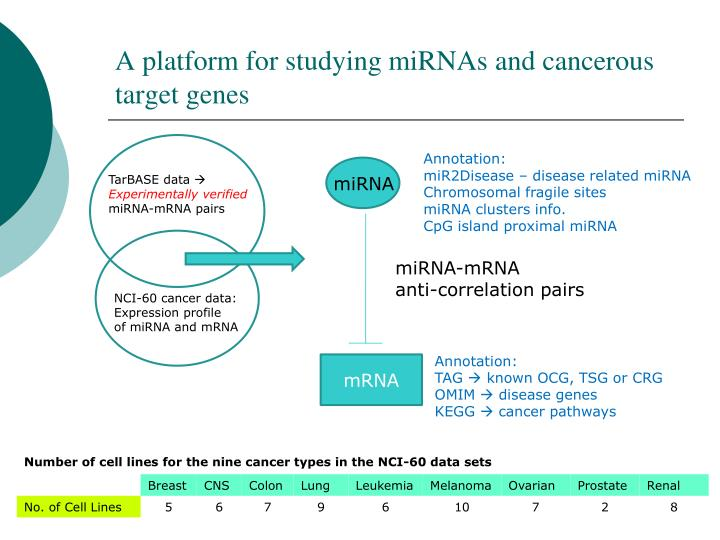 A platform for studying miRNAs and cancerous target genes