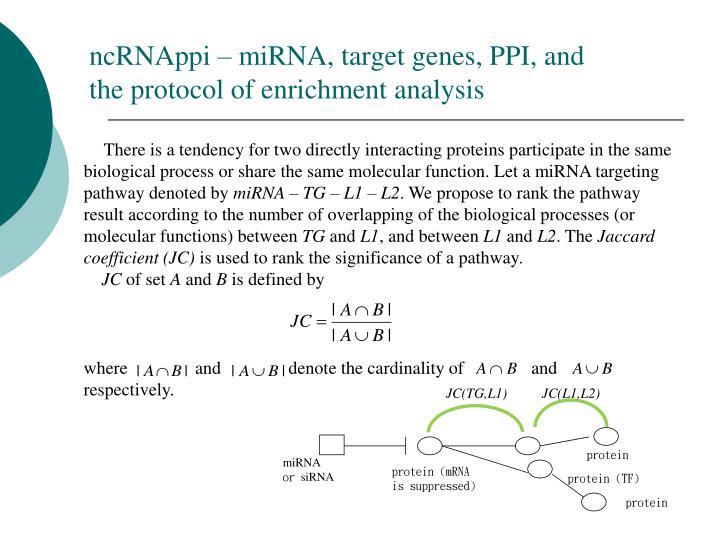 ncRNAppi – miRNA, target genes, PPI, and