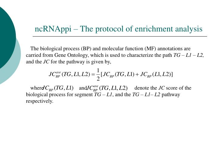 ncRNAppi – The protocol of enrichment analysis