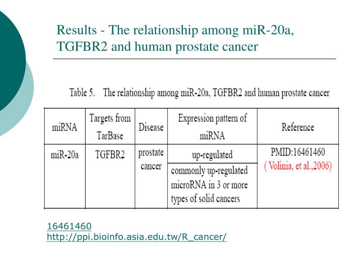 Results - The relationship among miR-20a, TGFBR2 and human prostate cancer
