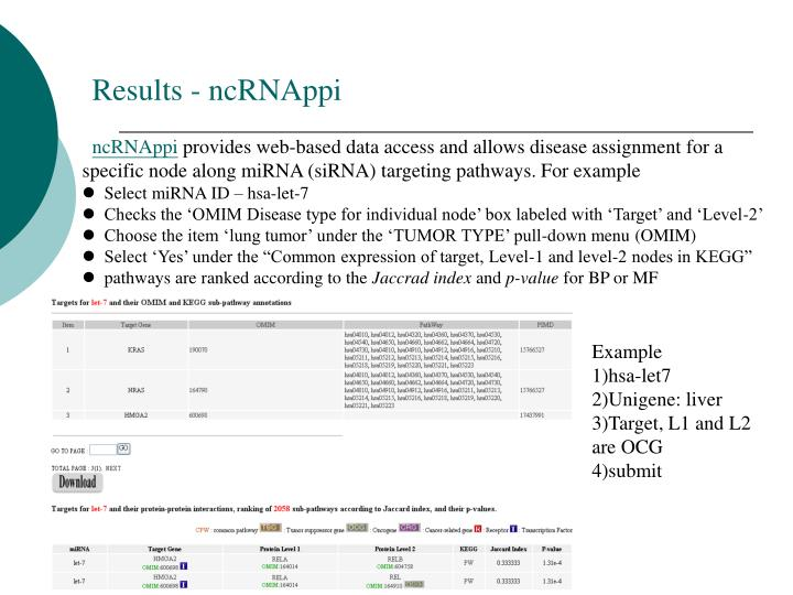 Results - ncRNAppi