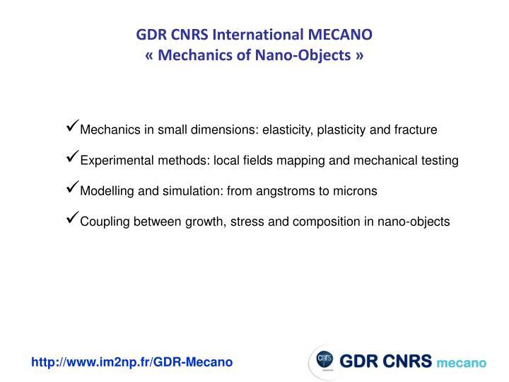 GDR CNRS International MECANO