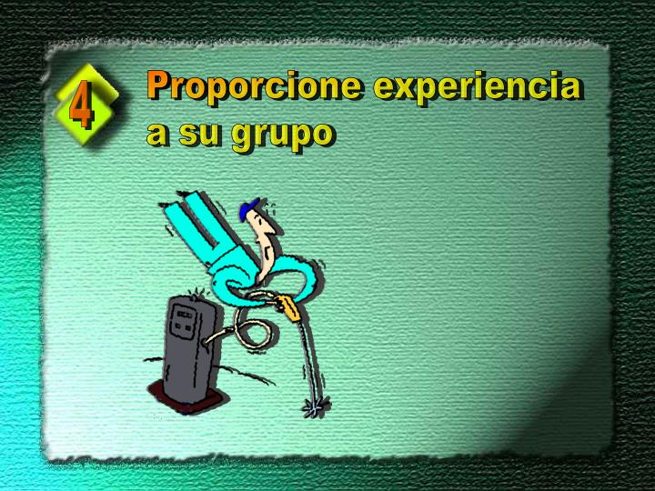 Proporcione experiencia
