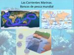 las corrientes marinas bancos de pesca mundial