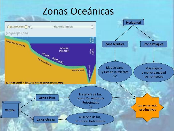 Zonas Oceánicas