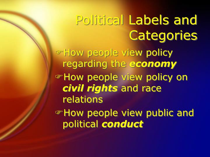 Political Labels and Categories