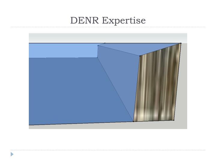 DENR Expertise