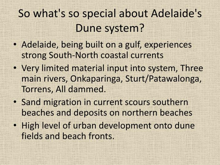 So what's so special about Adelaide's Dune system?