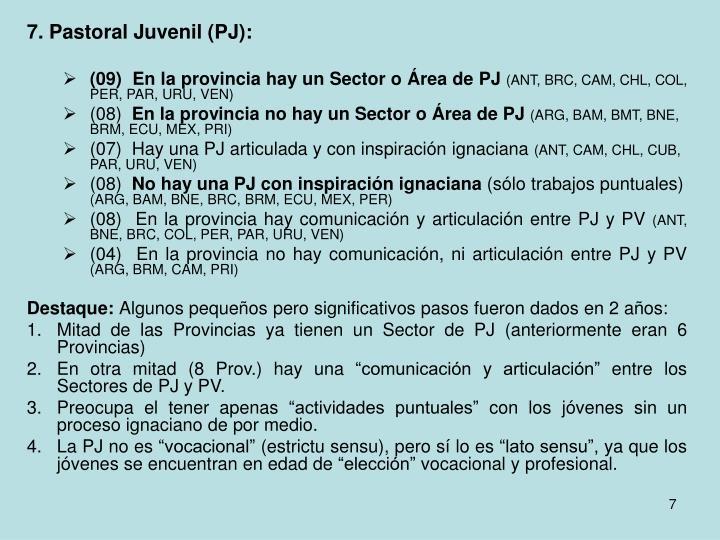 7. Pastoral Juvenil (PJ):