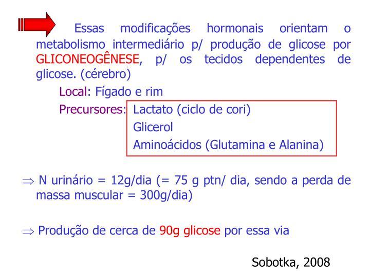 Essas modificações hormonais orientam o metabolismo intermediário p/ produção de glicose por