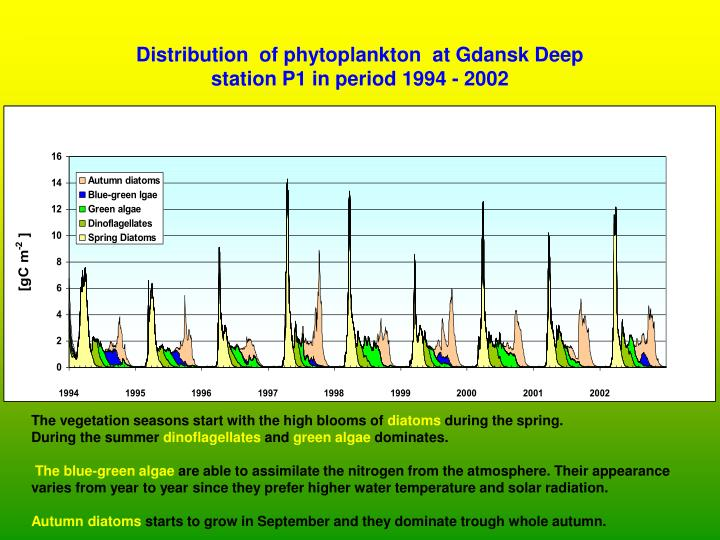 Distribution  of phytoplankton  at Gdansk Deep