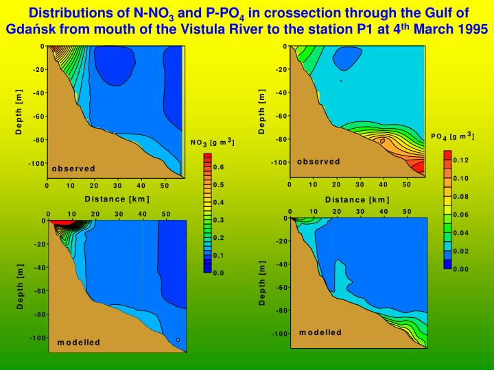 Distributions of N-NO