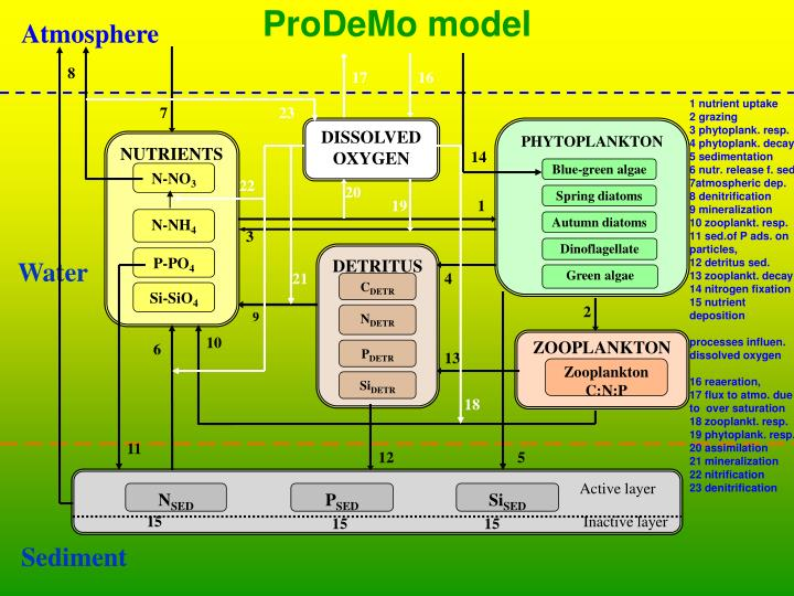 ProDeMo model