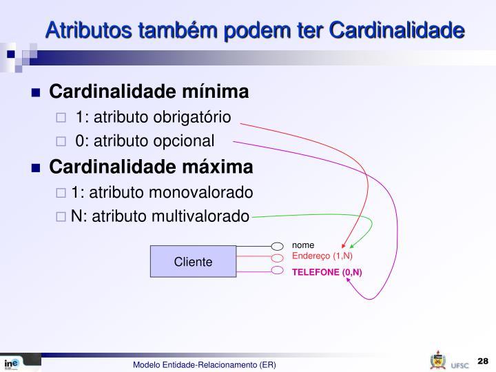 Atributos também podem ter Cardinalidade