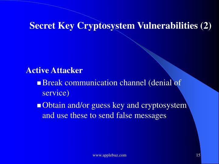 Secret Key Cryptosystem Vulnerabilities (2)