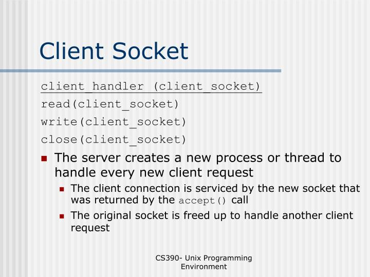 Client Socket