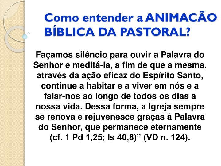 Como entender a ANIMACÃO BÍBLICA DA PASTORAL?