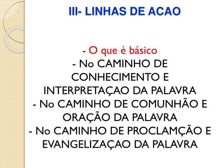 III- LINHAS DE ACAO