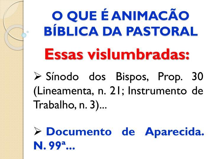 O QUE É ANIMACÃO BÍBLICA DA PASTORAL