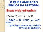 o que animac o b blica da pastoral2